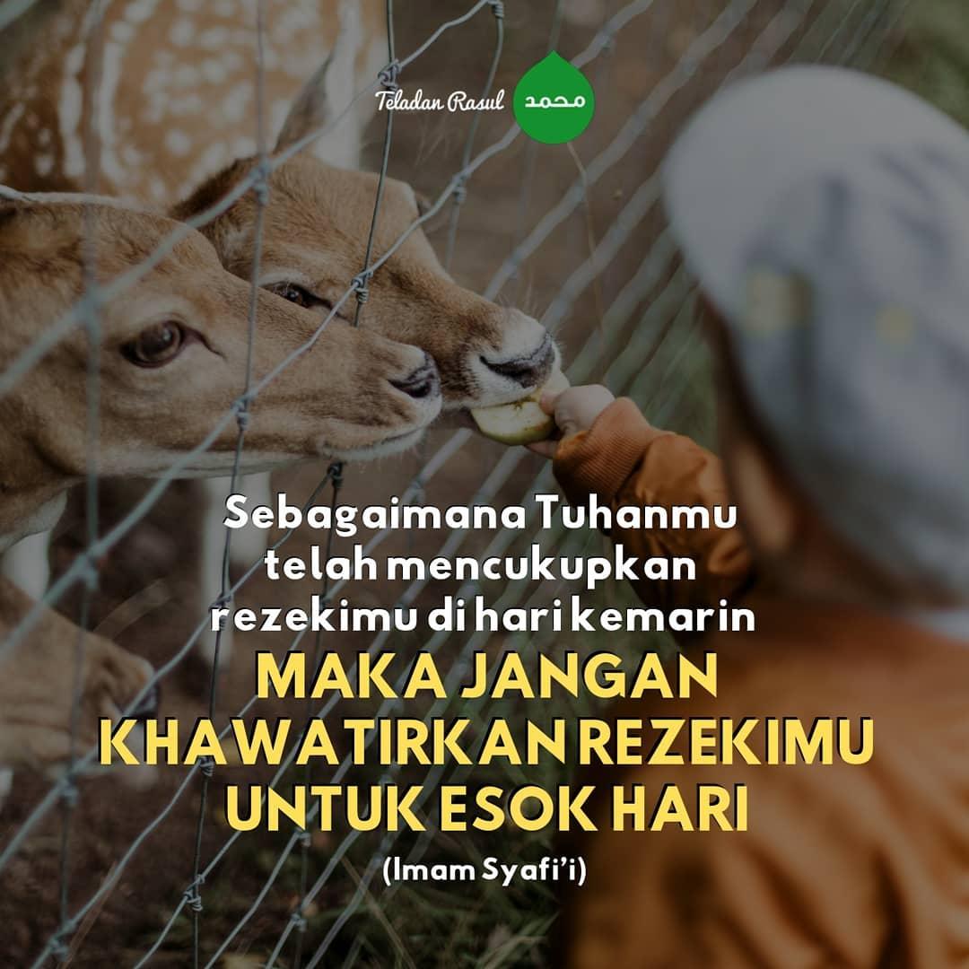 Kata Kata Islami Penyejuk Hati Yang Galau Paling Sedih