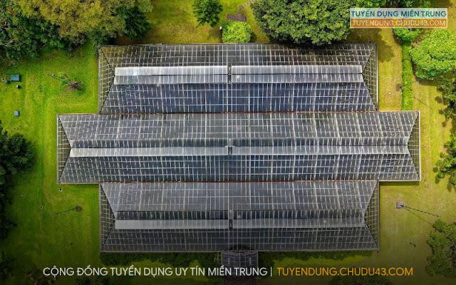 CSP Solar, công ty Cổ phần Đầu tư Điện năng lượng mặt trời Miền Trung