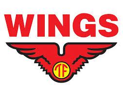 loker terbaru wings