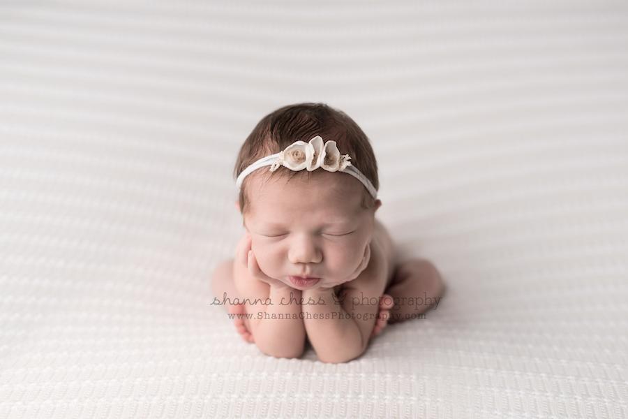 newborn photography studio eugene oregon