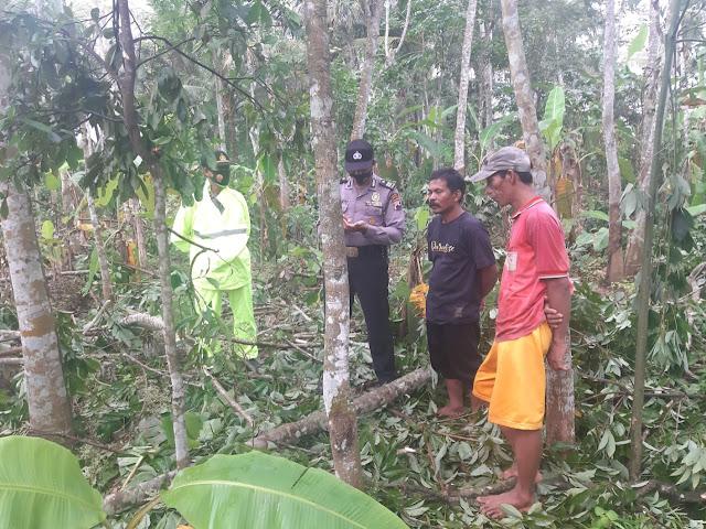 Warga Kemangkon Ditemukan Tewas Saat Tebang Pohon Karet