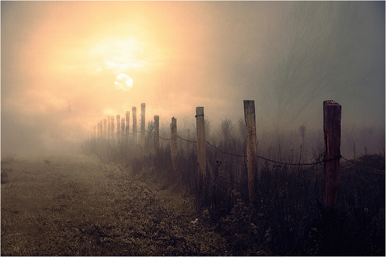 Emerging Photographers, Best Photo of the Day in Emphoka by Glas-8