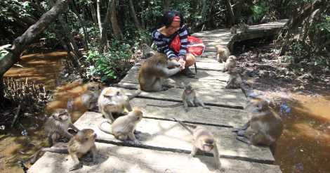 Pulau Kembang