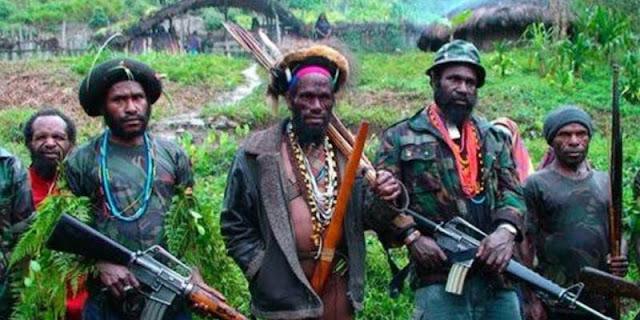 Satgas Gabungan TNI-Polri Berhasil Kuasai Markas Ter0ris OPM Di Papua