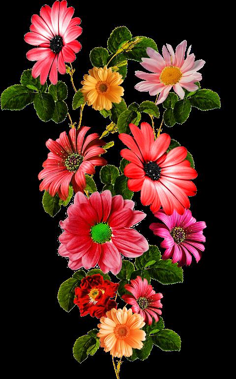 Flower-patch-textile-design-7028
