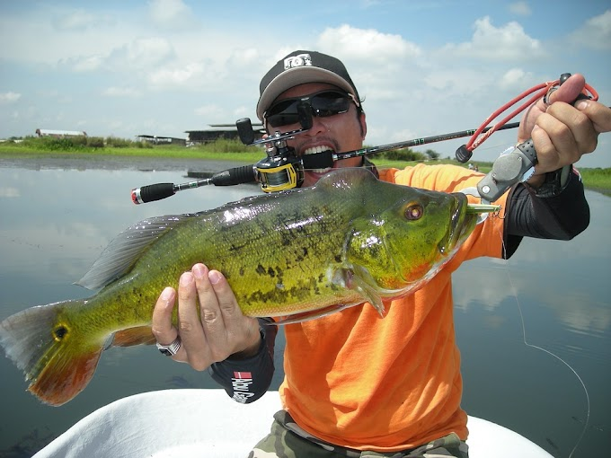 Sunglasses for Fishing – The Coolest Piece of Gear