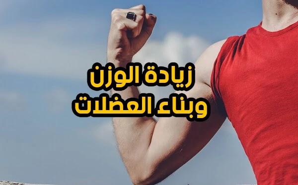 تعلم كيفية زيادة الوزن وبناء العضلات بسرعة طرق صحية لعلاج النحافة