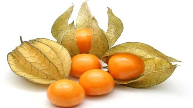 OMG! जिन रोगों को डॉक्टर भी ठीक नहीं कर पाते उनके लिए संजीवनी बूटी है ये फल