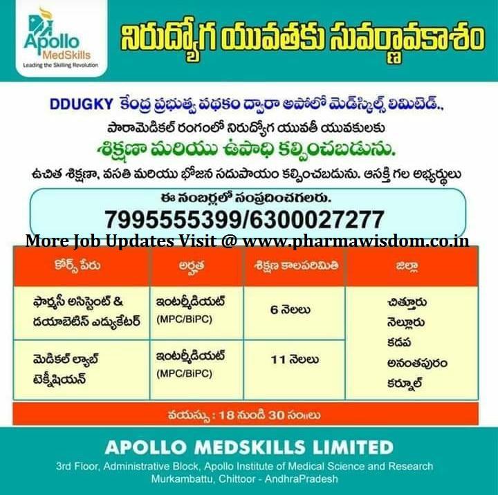 Apollo MedSkills Limited - Job Opportunity for Intermediate