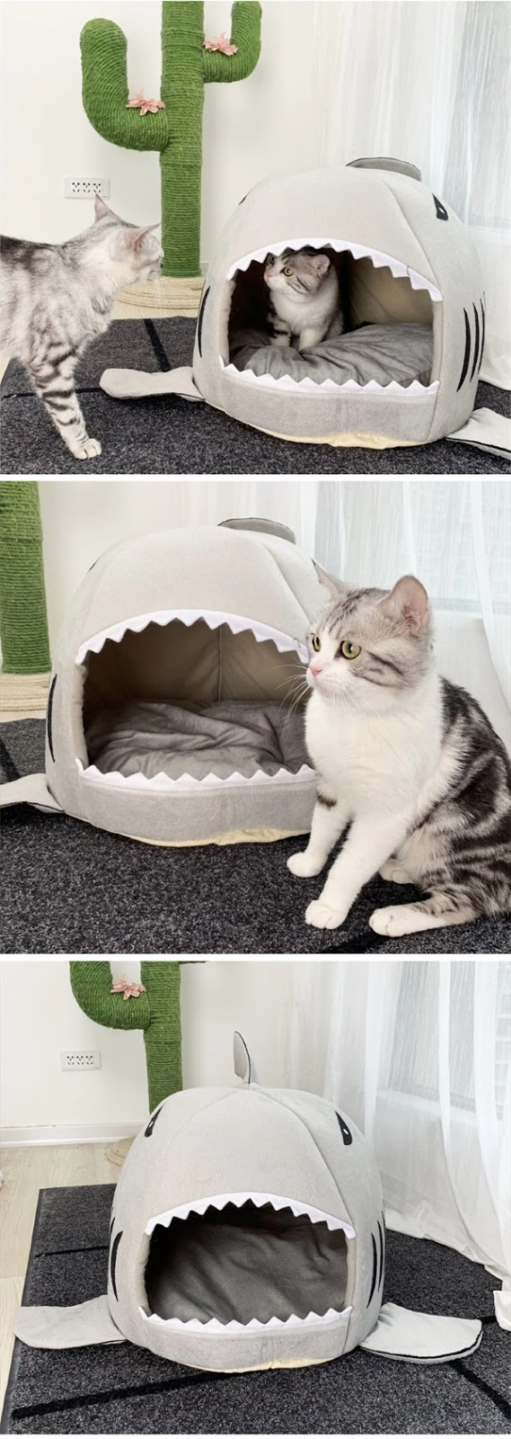 shark mouth cat bed