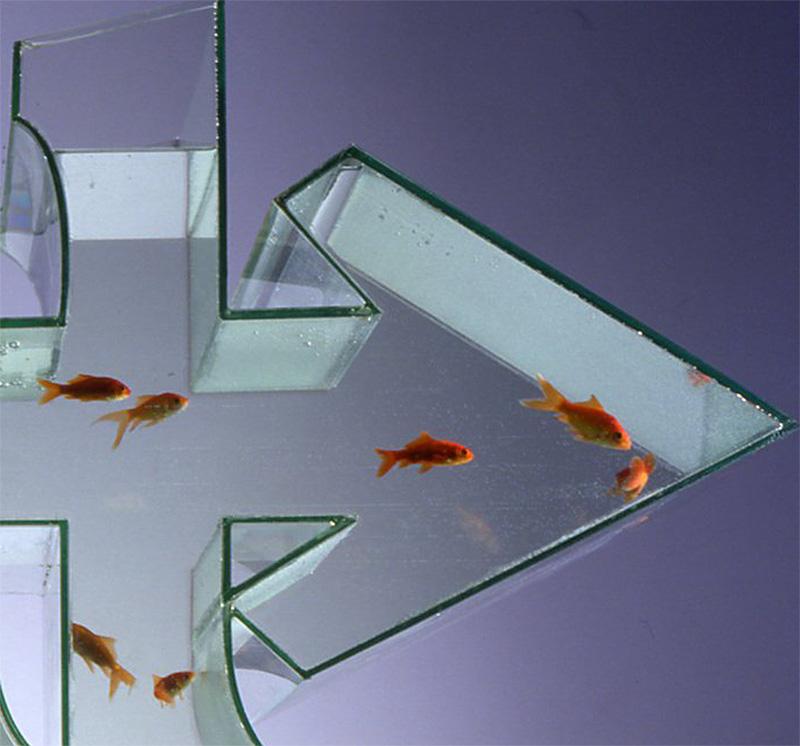 The graffiti fishtank by artist dean zeus coleman for Coleman s fish