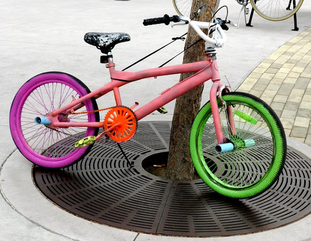 Painted Bike