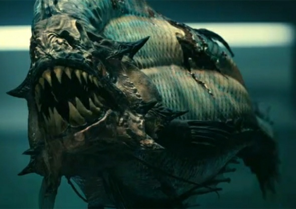 The Deadliest Piranha Attacks | Mysteriesrunsolved