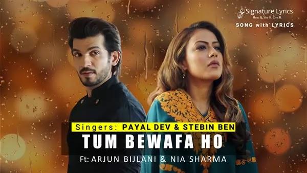 Tum Bewafa Ho Lyrics - Payal Dev | Stebin Ben