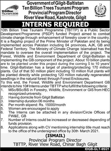 Internships 2021 - Internships Near Me - Internship Program 2021 - 10th Billion Tree Tsunami Programme (TBTTP) Internship 2021 in Pakistan