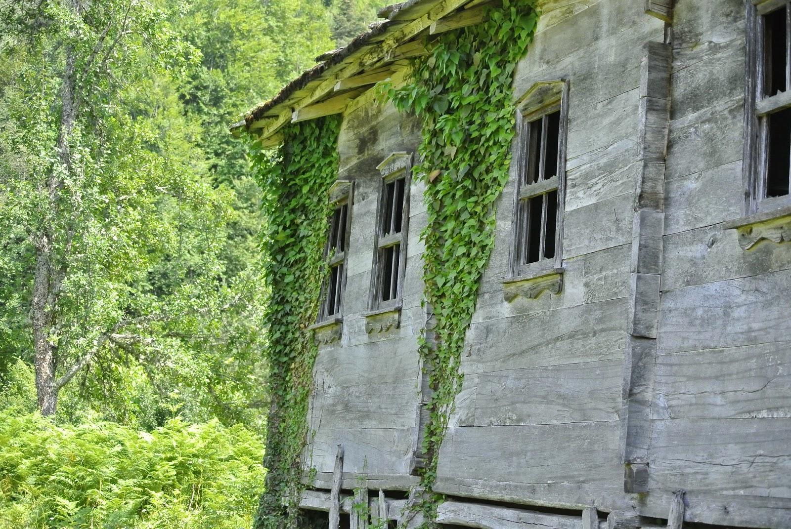 terkedilmiş evler