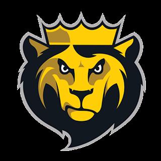 Logo DLS 17 singa