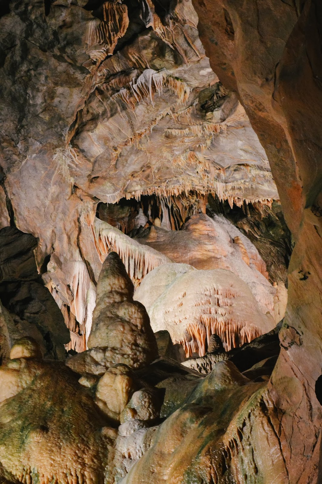 Places To Visit Gough's Cave & Cheddar Village