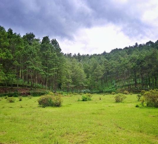 Tempat Wisata Ponorogo Hits dan Wajib Dikunjungi