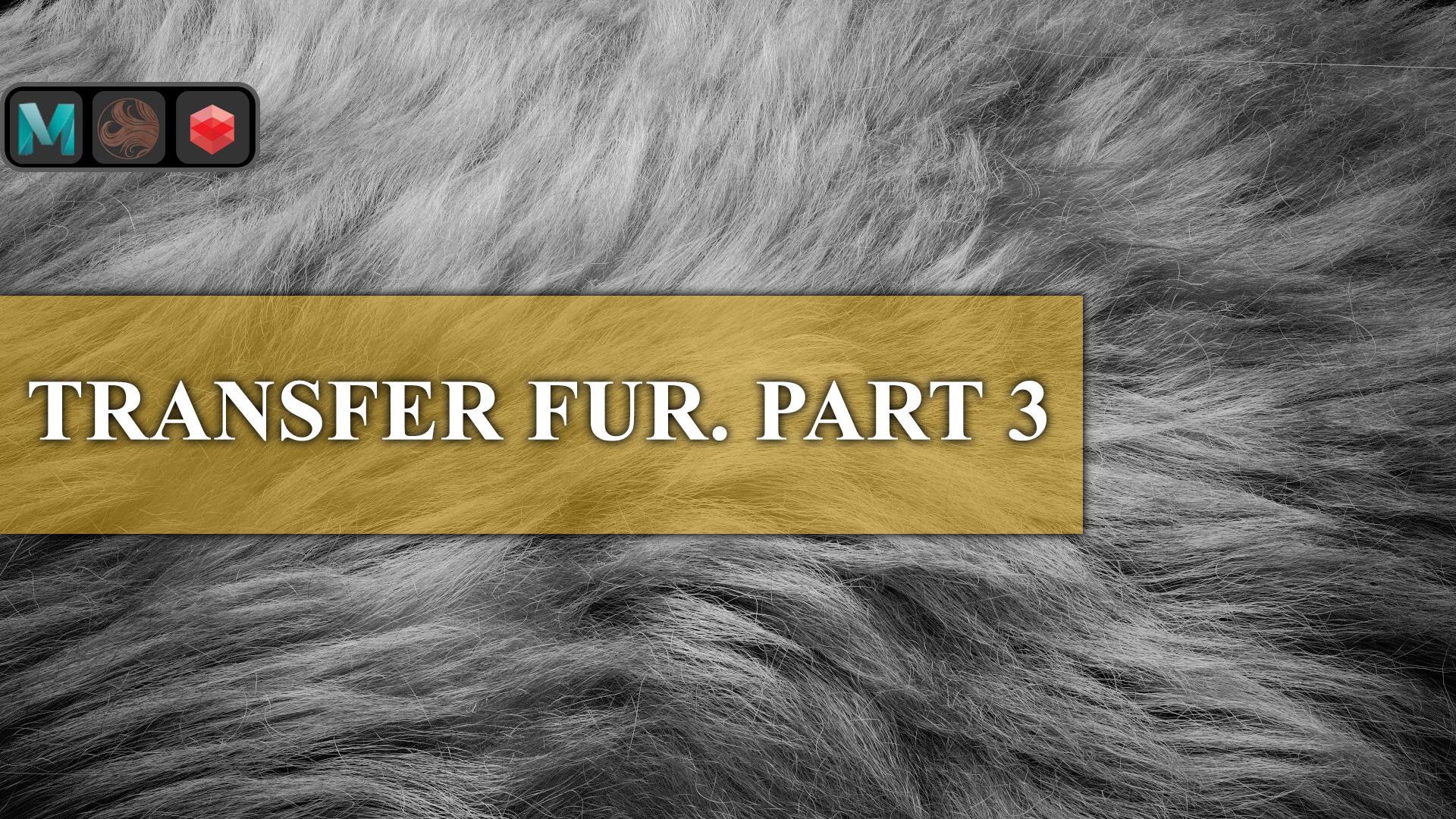 TRANSFER_FUR_PART3.jpg