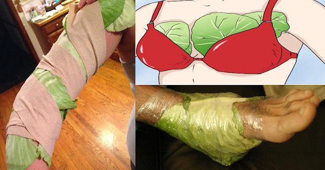 AFTER READING THIS, YOU WILL SURELY START PUTTING CABBAGE LEAVES ON YOUR CHEST AND LEGS!