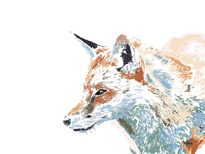Colorful Fox Foxes Animals Animal Prints