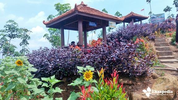 Wisata Kebun Bunga Di Batang