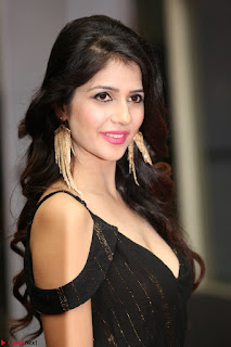 Kashish Vohra at Rogue Movie Audio Launch ~  (55).JPG
