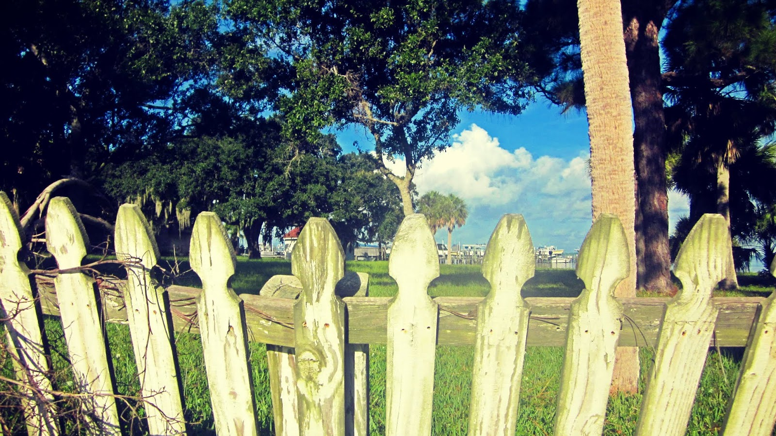 A white picket fence overlooking the bay on the Golden Coast of Florida