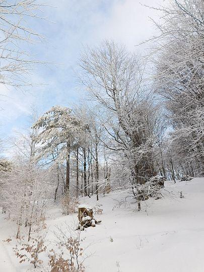 Cudowna aura panuje w Beskidzie Niskim.