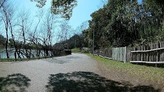 服部緑地公園内の道