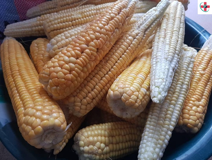 See why corn is one of the healthiest grain in the world