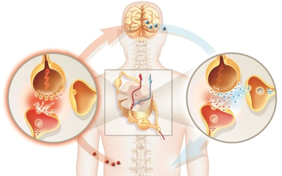neuropathic risk factors neuropathy pain