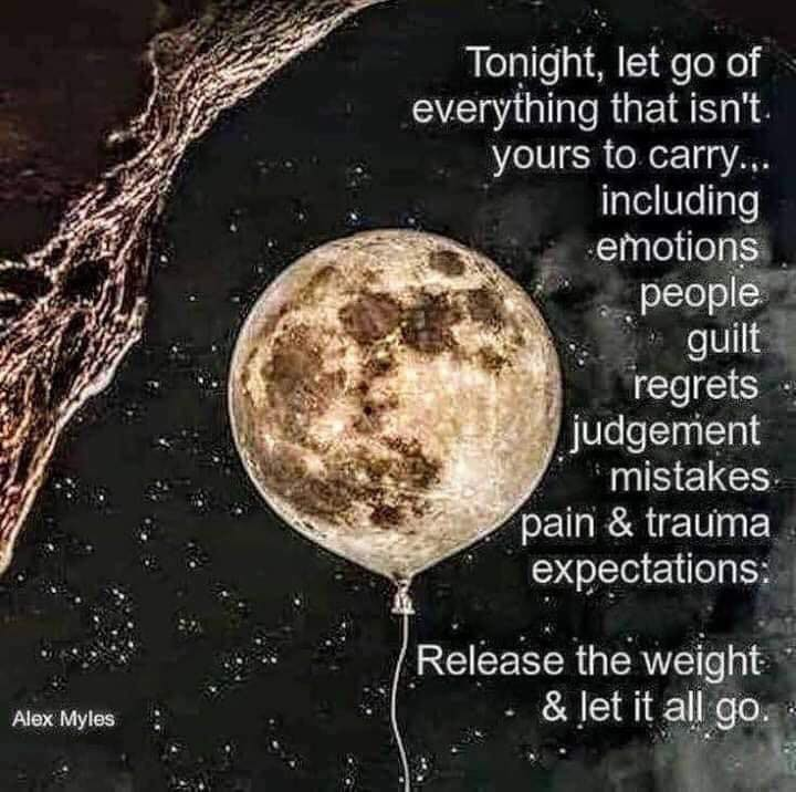 The Earth Plan: Let Go, Release ~ Alex Myles