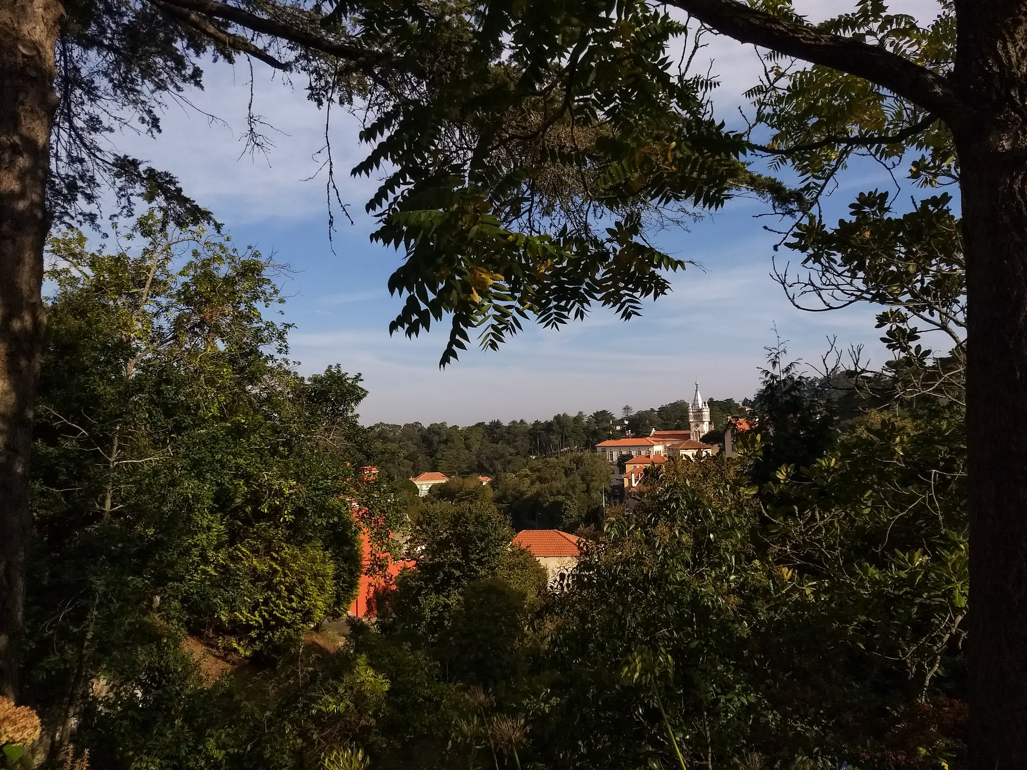 View through trees in Sintra, Portugal.