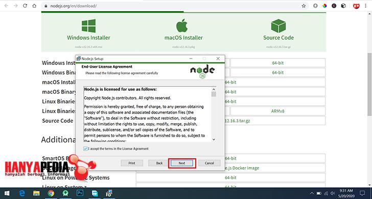 Install node.js dan pnm