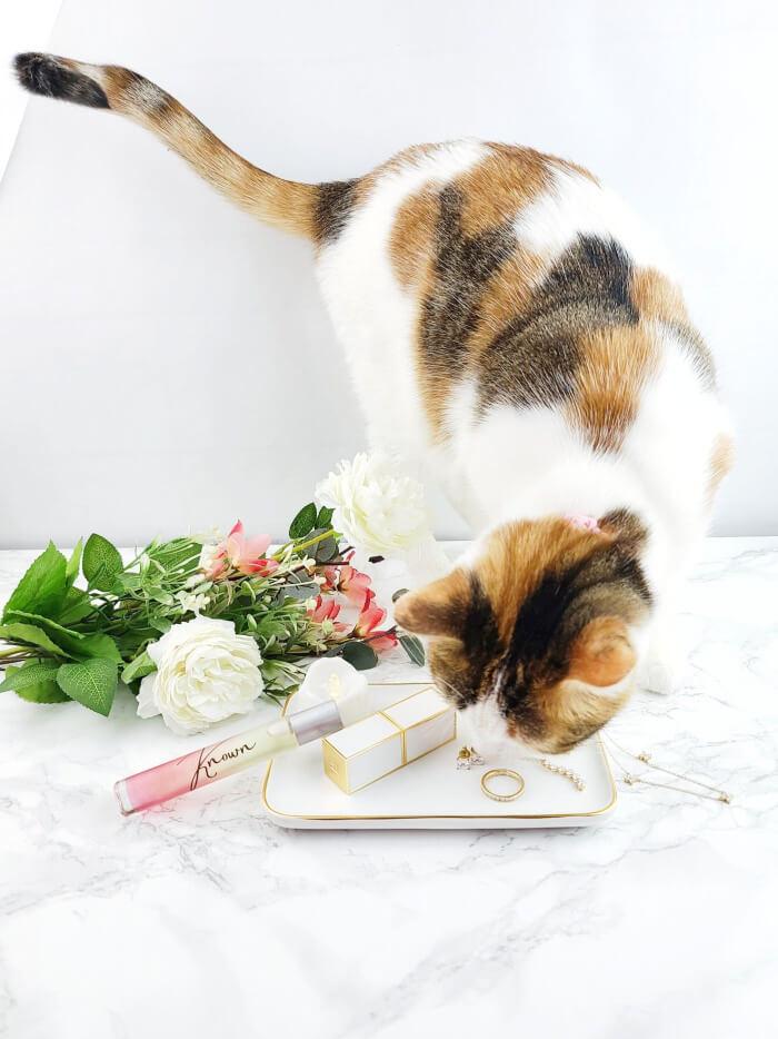 a-girls-gotta-spa-known-perfume-daisy-adair-nosy