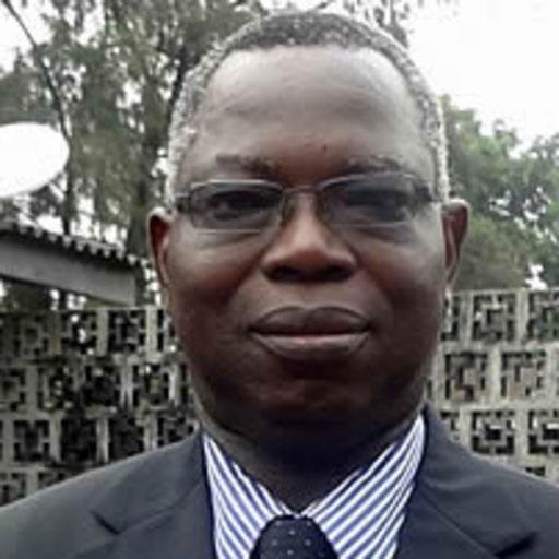 Prof Theophillus Soyombo