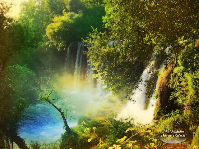 whatsapp-dp-Nature-HD-Wallpaper
