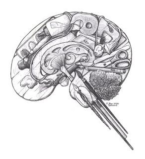 A human brain made out of art supplies