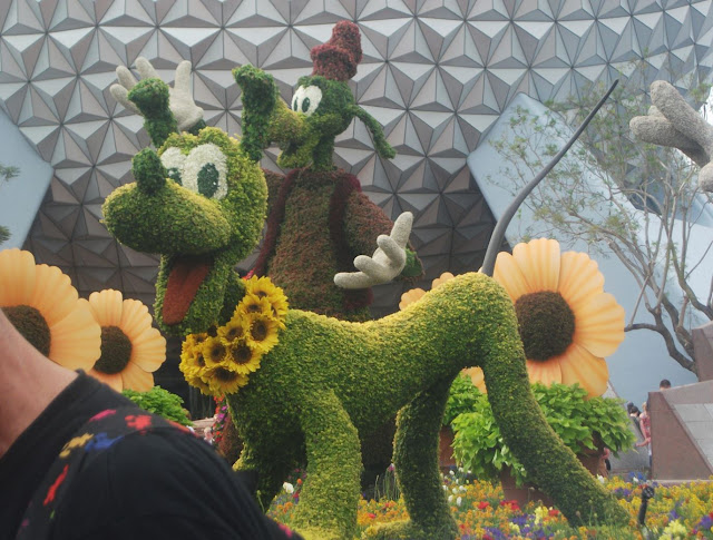 EPCOT Topiary Pluto and Goofy