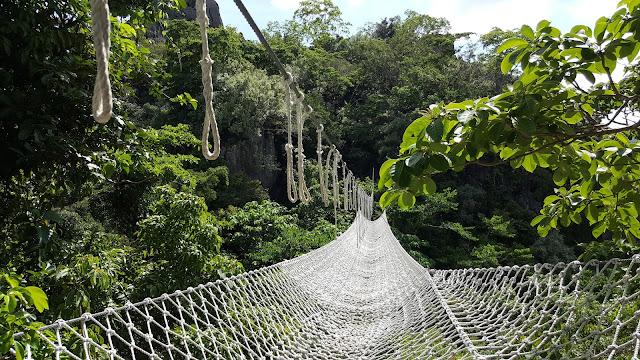 Rope bridge in Bali