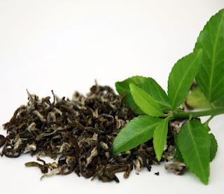 Beneficios del té verde, moda y belleza