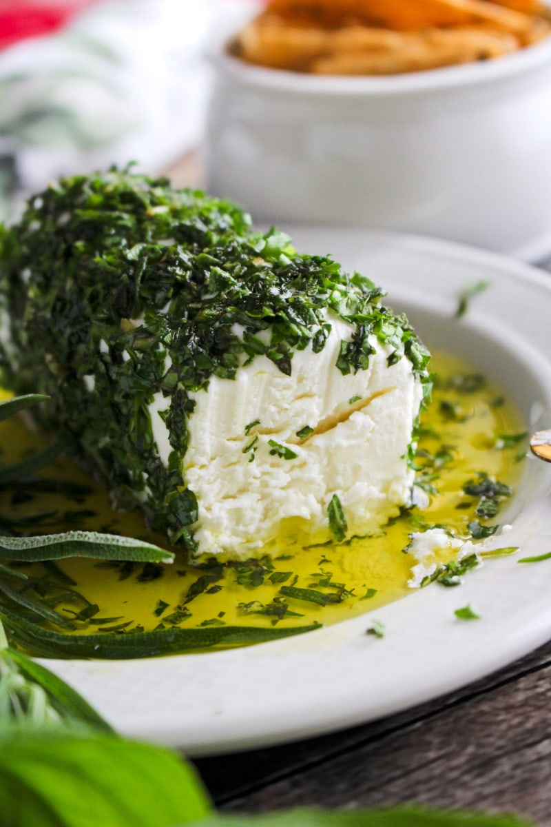 Side view closeup of Herb and Olive Oil Goat Cheese Log on a cream colored plate.