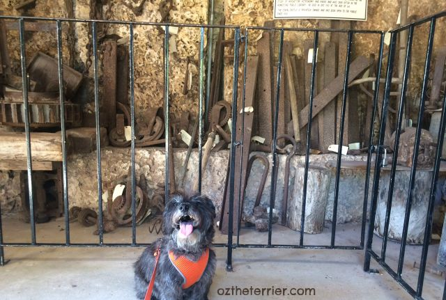 Oz visits Ed Leedskalnin's tool room at dog-friendly Coral Castle in Miami, FL