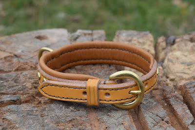 Padded leather collar with brass half moon buckle and studs made for a Jack Russell Terrier