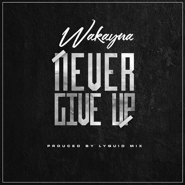 Wakayna - Never Give Up