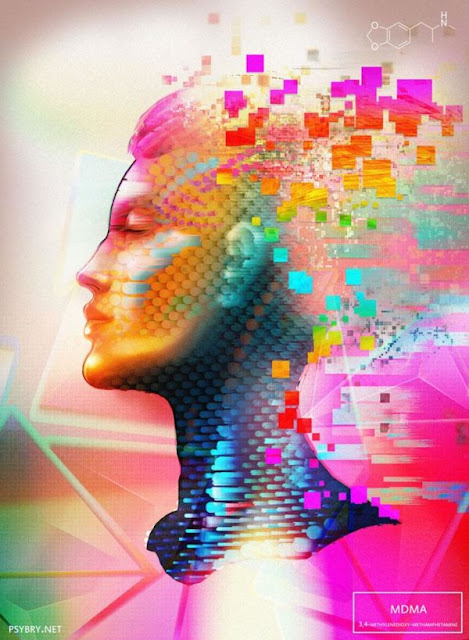 Brian Pollett, Drogas psicoativas, estados alterados de consciência, Butylone, GHB, Codeína, THC, Álcool, Nitrous, Cocaína, Psilocibina, 4-HO-MIPT, Poppers, DMT, Éter, NBOMe, Metoxetamina, Ecstasy, Anfetamina, Mescalina, Cetamina, LSD,