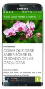 App móvil: Cosas que debe saber sobre el cuidado de orquídeas