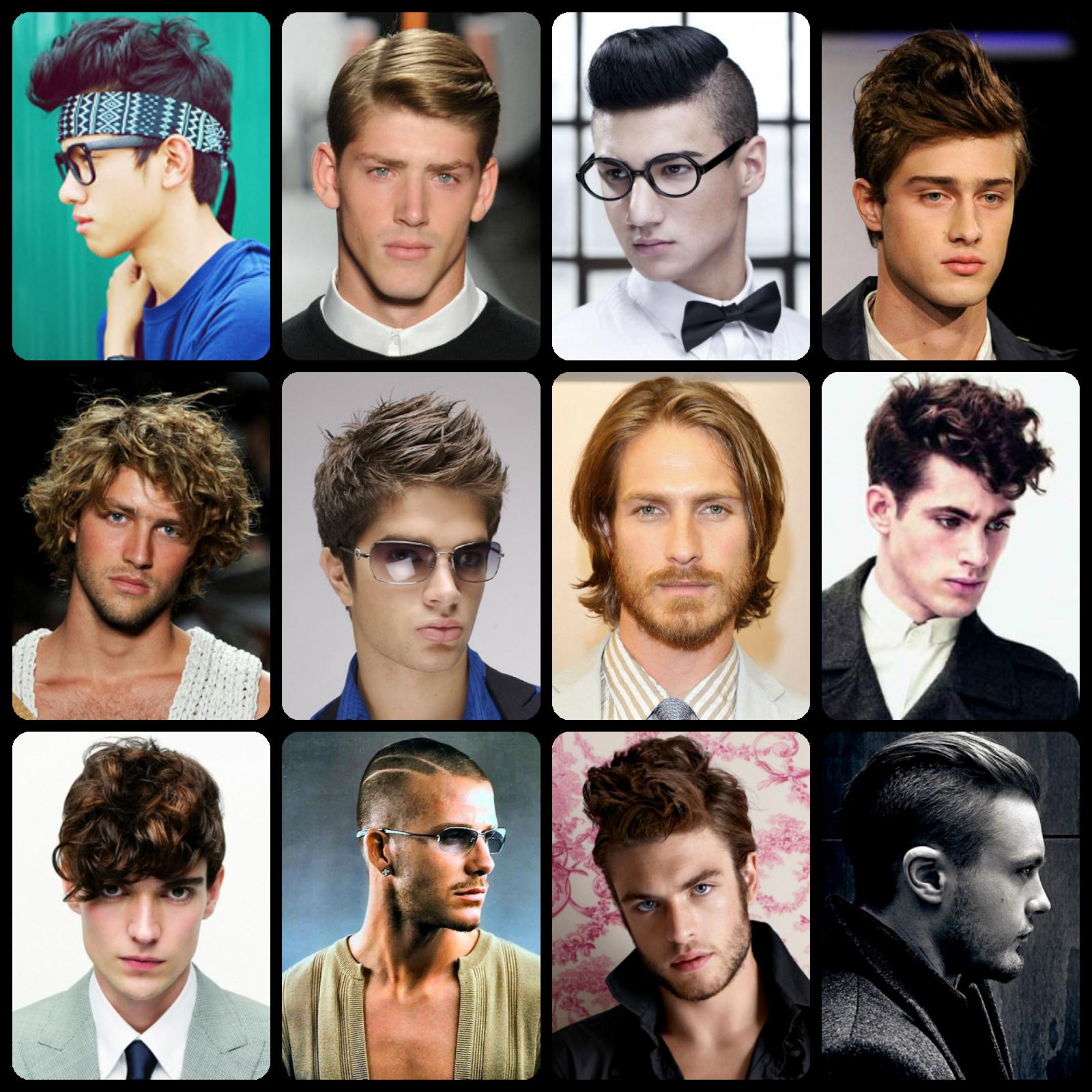 Pleasant List Of Men Hairstyles Dogs Cuteness Hairstyle Inspiration Ideas Short Hairstyles Gunalazisus